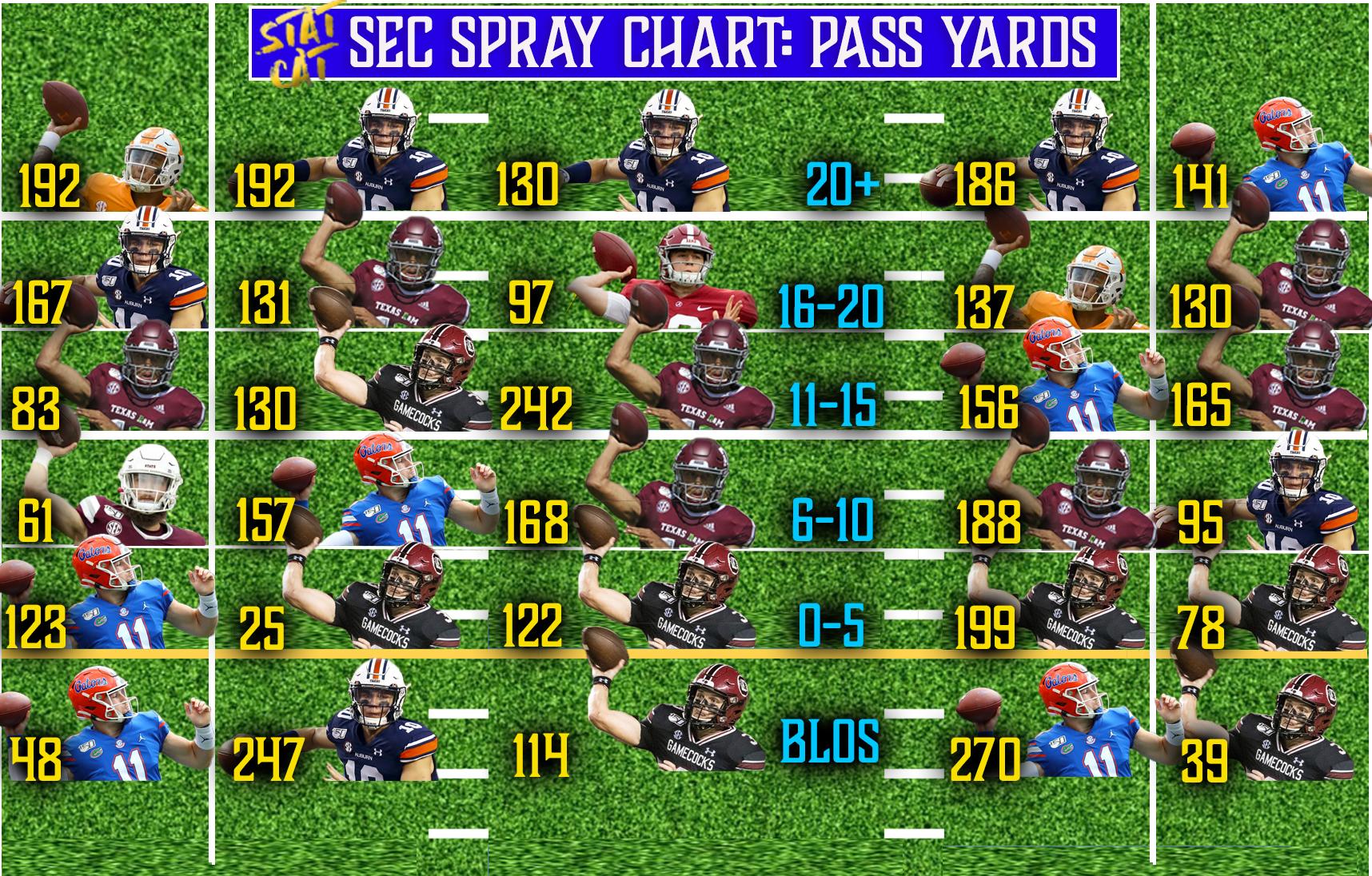 2020 Returner Spray Chart: Pass Yards